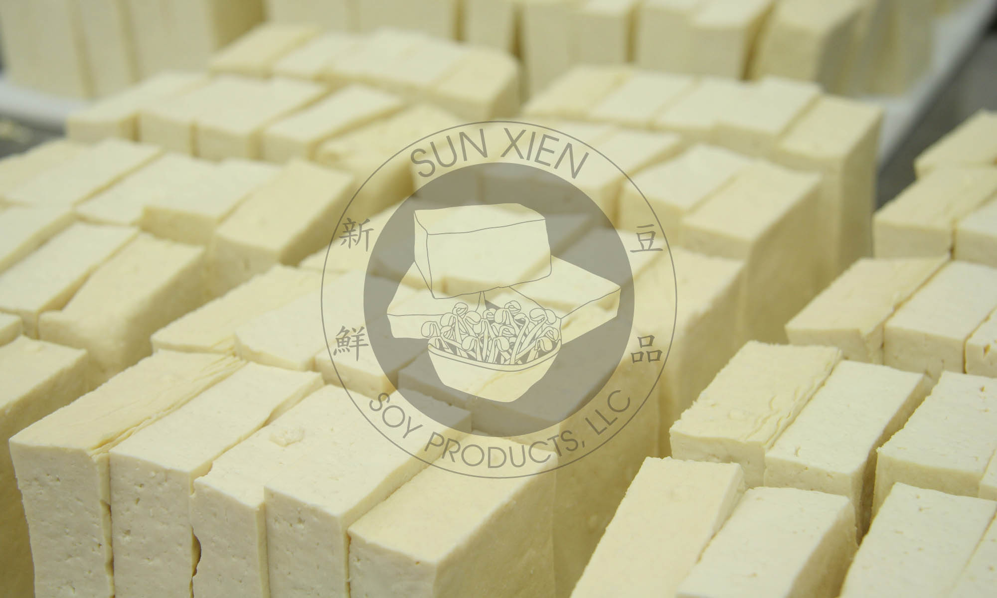 Sun Xien Soy Products